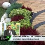 bitki koruma resim3 150x150 - Erhan Göre, Süs Bitkilerindeki Hastalık ve Zararlıları Anlattı