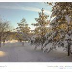 DSC 2049 150x150 - Fotoğraflar