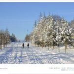 DSC 2188 150x150 - Fotoğraflar
