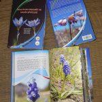 """1 150x150 - """"Bolu'nun Endemik ve Nadir Bitkileri"""" Kitabı Yayınlandı"""