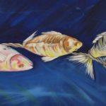 asılı balkıklar 1 150x150 - BAİBÜ'de Esir Balıklar Sergisi