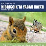 1 150x150 - Kıbrıscık Araştırmaları ve Halk Kültürü Sempozyumu / 31 Ekim / 1-2 Kasım 2019
